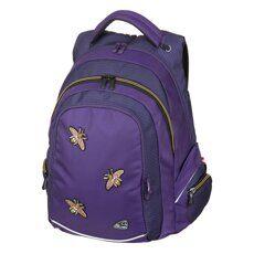 Школьные рюкзаки Walker