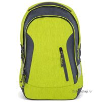 Рюкзак школьный Ergobag Satch Sleek Ginger Lime